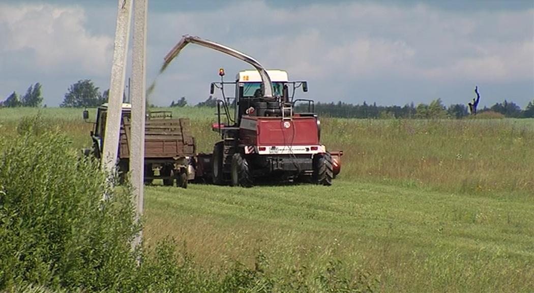 В регионе почти в два раза увеличат финансирование по «Агростартапам»
