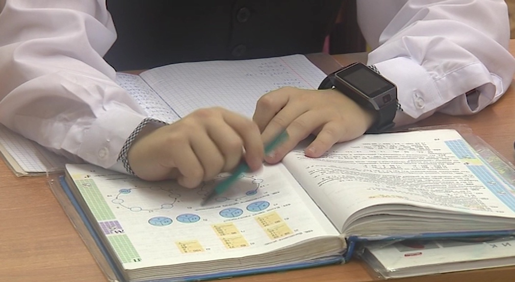 Как будут работать кружки и секции: специалисты департамента образования проведут прямой эфир